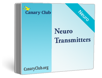 Neurotransmitter testing