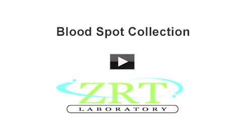 blood spot collection videos